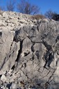 This is a good example of karst limestone dissolution fractures